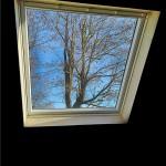 window-4749463_960_720